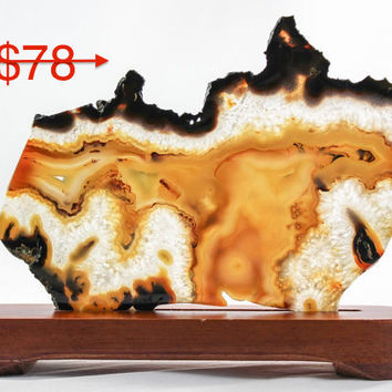 Brazilian Agate Slice with wood stand - 30% off sale!!!