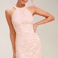 Love Poem Blush Pink Lace Dress