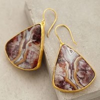Paisley Fossil Earrings by Heather Benjamin Grey One Size Earrings