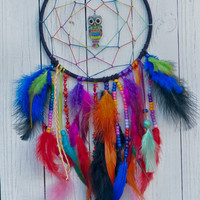 Rainbow Storm Owl Dream Catcher