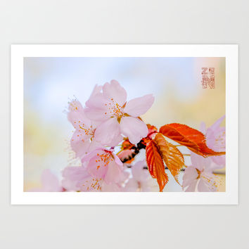Sakura - Japanese cherry blossom Art Print by Digital2real