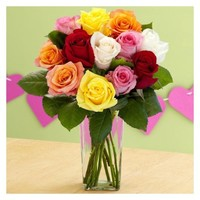 One Dozen Rainbow Valentine's Roses with Square Glass Vase - ProFlowers