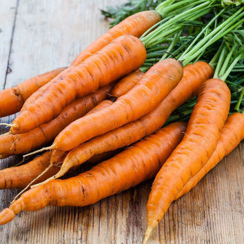 1/4 Pound of Danvers Carrot Seed- Bulk Garden Seed