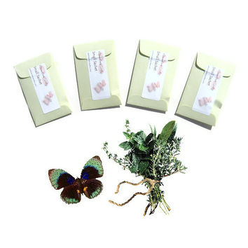 Rosemary Mint Scented Sachets 4 Mini Envelope Sachets - Herb Lover Gift - Botanical Blend Drawer Sachet Favors - Green Garden Style