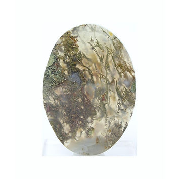 Sagenite Agate Marcasite Plume Gem Agate Large Stone Flat Back Oval Cabochon