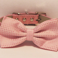 Pink Dog Bow Tie attached to Pink leather collar, Rhinestone Buckle, Cute,Love Pink, Pet Birthday Accessory