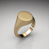 Gentlemens Modern 14K Yellow Gold Oval Signet Ring R487M-14KSSYG