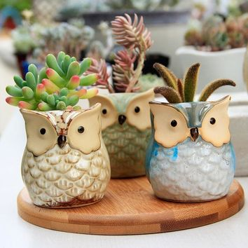 WHISM Cute Owl Ceramic Plant Pot Decorative Flower Pot Garden Pots Planter Mini Bonsai Vase Succulent Planter Animal Flowerpot