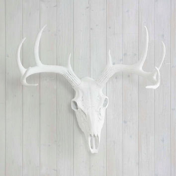 The Large White Faux Taxidermy Resin Deer Head Skull Wall Mount | White Deer Head w/ Colored Antlers