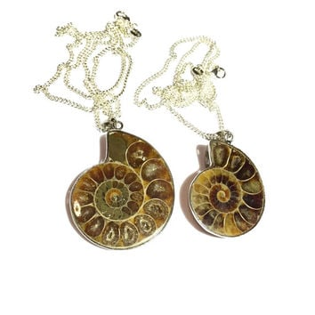 Ammonite Fossil Nautilus Shell Pendant Necklace Sterling Silver
