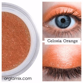 Celosia Orange Eyeshadow