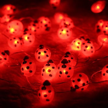 40LED 10Ft 3m Ladybug Led string Light Decoration Halloween Indoor&Outdoor Battery Operated Silver Wire String Light With Remote
