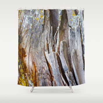 Relic of the Forest Shower Curtain by Heidi Haakenson