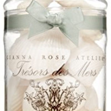 Gianna Rose Seashell Soaps in Apothecary Jar