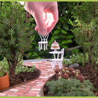 How to Create a Living Miniature or Fairy Garden That by Janit