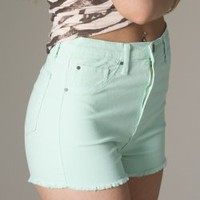 High Rise Color Shorts