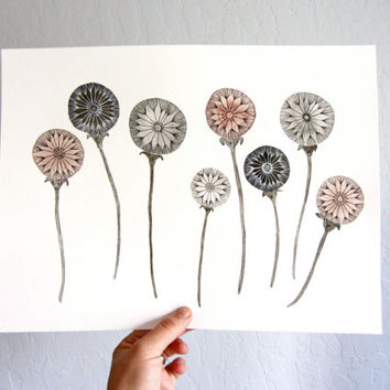 Dandelion Art Watercolor Painting - Large Archival Print - 11x14 Eight Dandelion Wishes