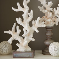 Decorative Coral on Stand