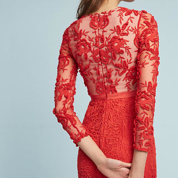 Serena Embroidered Dress