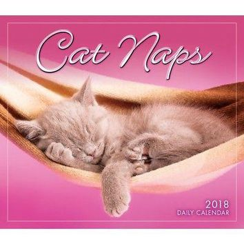 Cat Naps Desk Calendar, Assorted Cats by Sellers Publishing
