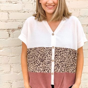 On My Wild Side Color Block Leopard Waffle Knit Top l S-2XL