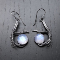 Prophecy Earrings - Bird Claw and Rose Cut Moonstone OOAK