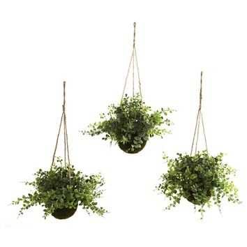 SheilaShrubs.com: Eucalyptus Maiden Hair and Berry Hanging Basket (Set of 3) 6741-S3 by Nearly Natural : Artificial Flowers & Plants