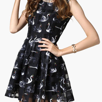 Limited Edition - The Black Swan Skater Dress