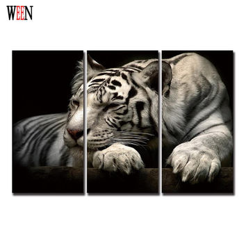 Lying White Tiger Wall Canvas Pictures Retro Wall Art Painting