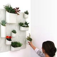 Turn Your Crib into a Living Garden with Magnetic Pots [Video]