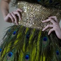 Peacock Feather & Gold Dress