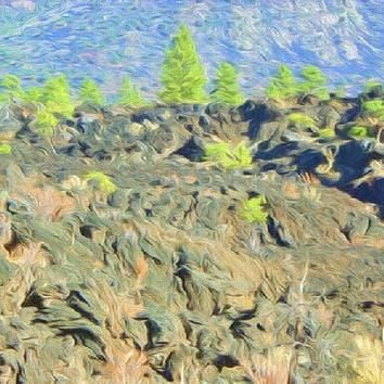 Trees Painting Photography Print Fine Art Wall Art Decor Southwest Art Arizona Desert Art Row of Pine Trees Lava Bed