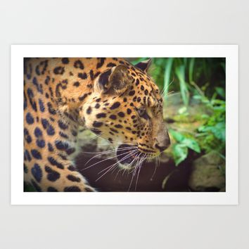 Leopard Art Print by Mixed Imagery
