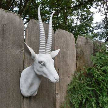 Faux Taxidermy / Wall Mount Animal Head / Modern / Antelope Head / Antlers