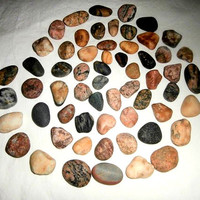 Lake Erie Stones- Craft Supplies Aquariums/Terrariums- Gardens-Vase Fillers-DIY