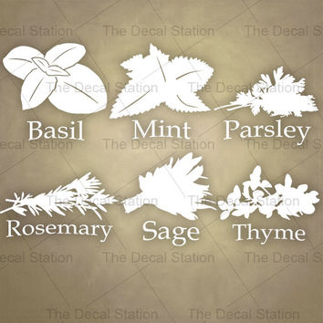 Kitchen Wall Decal, Herbs/Spices, Vinyl Sticker, Pantry, Home Decor