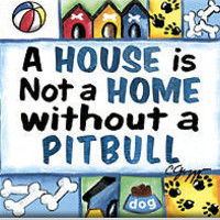 A house is not a home without a pit bull magnet