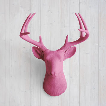 The Virginia Large Fuchsia Faux Taxidermy Resin Deer Head Wall Mount | Fuchsia Stag w/ Colored Antlers