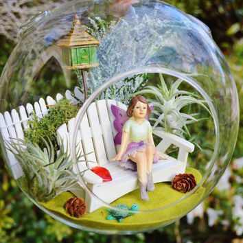 Fairy Garden with Bench ~ Fairy ~ Bird House ~ Lichen Moss ~ White Picket Fence~ 2 air plants ~ Terrarium Kit ~ XL ~Gift Idea