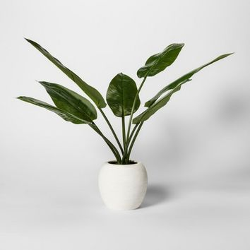 Artificial Banana Leaf Plant - Threshold™