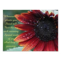 Red Sunflower, Inspirational Advice Poster
