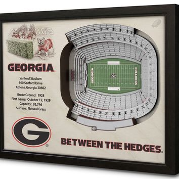 Georgia Bulldogs | 3D Stadium View | Sanford Stadium | Wall Art | Wood