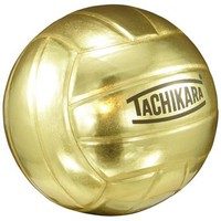 The Champ Metallic Gold Autograph Volleyball