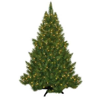 "General Foam Plastics 4' 5"" Green Evergreen Fir Artificial Christmas Tree with 250 Pre-Lit Clear Lights"