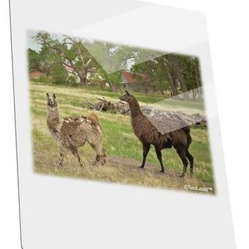 Standing Llamas Metal Panel Wall Art Portrait - Choose Size by TooLoud