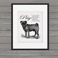 Pug Storybook Style Canvas Print: Dog, Wall Art, Rustic, Vintage, Antique, Decor, Artwork, DIY, Breed, Gift