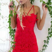 Cherry Bomb Lace Dress