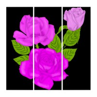 Pink Tea Rose Triptych