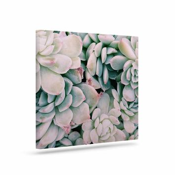 "Chelsea Victoria ""Succulent Blush"" Blue Pink Photography Canvas Art"