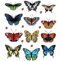 Festival New Landscaping Decoration Heart Shaped Stickers 12 Butterfly Stickers